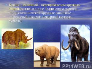 Кризис, связанный с перепромыслом крупных зверей (возник в конце ледникового пер