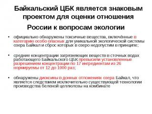 Байкальский ЦБК является знаковым проектом для оценки отношения России к вопроса