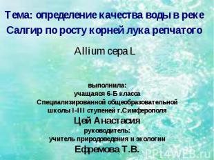 Тема: определение качества воды в реке Салгир по росту корней лука репчатого All