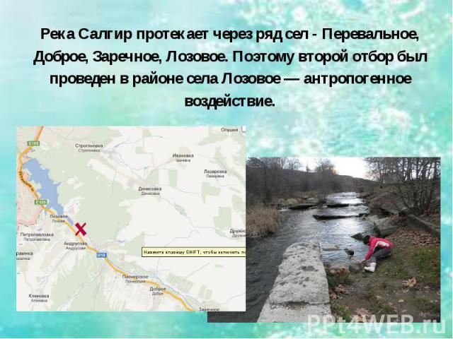 Река Салгир протекает через ряд сел - Перевальное, Доброе, Заречное, Лозовое. Поэтому второй отбор был проведен в районе села Лозовое — антропогенное воздействие.