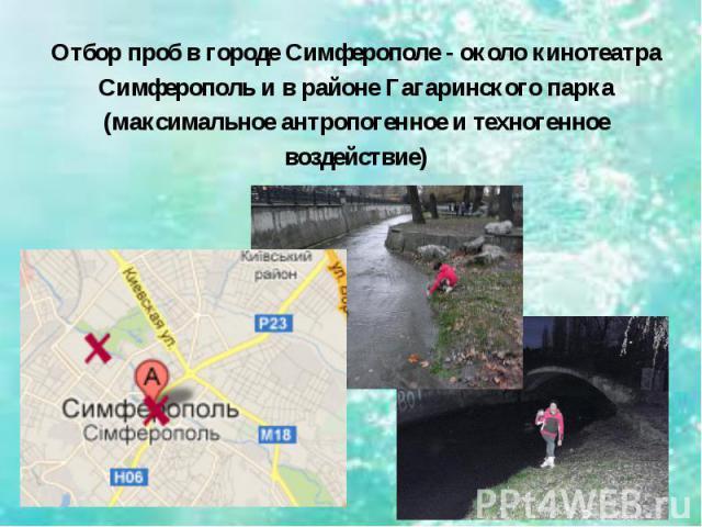 Отбор проб в городе Симферополе - около кинотеатра Симферополь и в районе Гагаринского парка (максимальное антропогенное и техногенное воздействие)