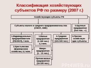 Классификация хозяйствующих субъектов РФ по размеру (2007 г.)