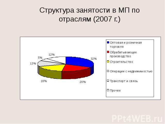 Структура занятости в МП по отраслям (2007 г.)