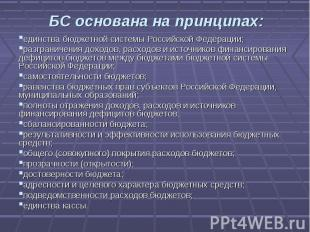 БС основана на принципах: единства бюджетной системы Российской Федерации;разгра