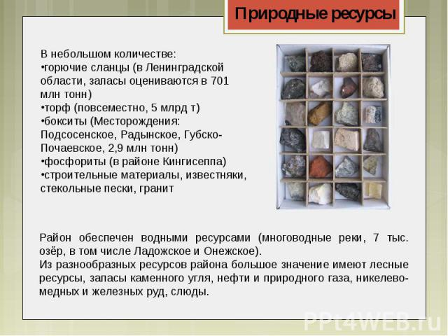В небольшом количестве:горючие сланцы(в Ленинградской области, запасы оцениваются в 701 млн тонн)торф (повсеместно, 5 млрд т)бокситы (Месторождения: Подсосенское, Радынское, Губско-Почаевское, 2,9 млн тонн)фосфориты(в районе Кингисеппа)строительны…