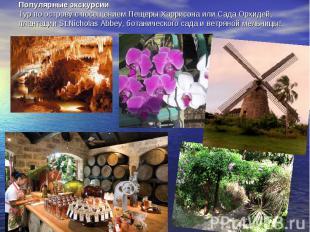 Популярные экскурсииТур по острову с посещением Пещеры Харрисона или Сада Орхиде