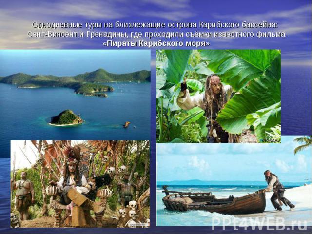 Однодневные туры на близлежащие острова Карибского бассейна: Сент-Винсент и Гренадины, где проходили съёмки известного фильма «Пираты Карибского моря»