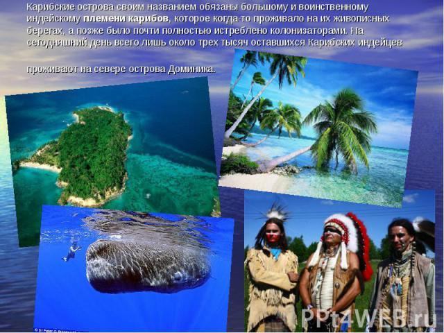 Карибские острова своим названием обязаны большому и воинственному индейскому племени карибов, которое когда-то проживало на их живописных берегах, а позже было почти полностью истреблено колонизаторами. На сегодняшний день всего лишь около трех тыс…