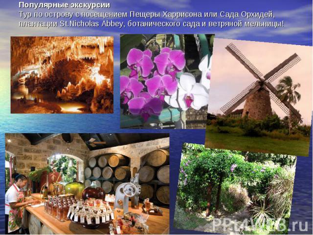 Популярные экскурсииТур по острову с посещением Пещеры Харрисона или Сада Орхидей, плантации St.Nicholas Abbey, ботанического сада и ветряной мельницы!