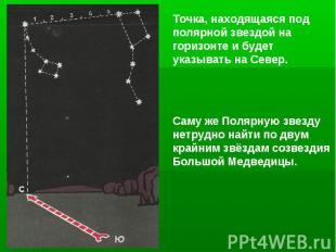 Точка, находящаяся под полярной звездой на горизонте и будет указывать на Север.