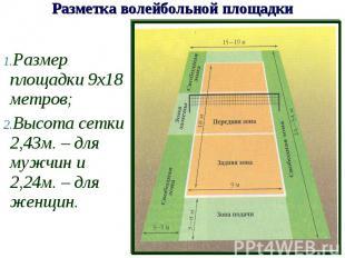 Размер площадки 9х18 метров;Высота сетки 2,43м. – для мужчин и 2,24м. – для женщ