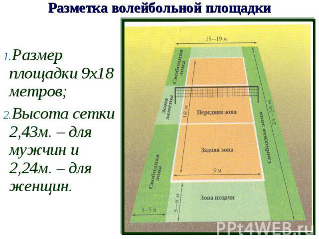 Размер площадки 9х18 метров;Высота сетки 2,43м. – для мужчин и 2,24м. – для женщин.