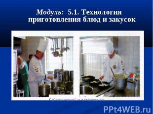 Модуль: 5.1. Технология приготовления блюд и закусок