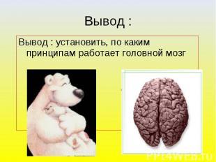Вывод : установить, по каким принципам работает головной мозг ?