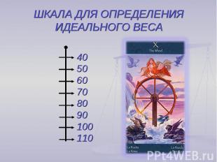 ШКАЛА ДЛЯ ОПРЕДЕЛЕНИЯ ИДЕАЛЬНОГО ВЕСА 405060708090100110