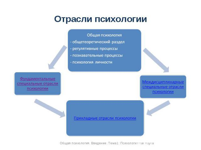 Отрасли психологии Общая психология- общетеоретический раздел- регулятивные процессы- познавательные процессы- психология личностиМеждисциплинарные специальные отрасли психологииПрикладные отрасли психологииФундаментальные специальные отрасли психологии