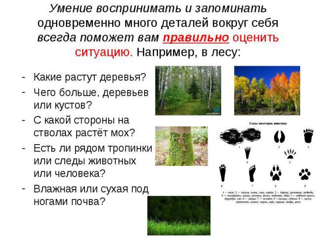 Умение воспринимать и запоминать одновременно много деталей вокруг себя всегда поможет вам правильно оценить ситуацию. Например, в лесу: Какие растут деревья?Чего больше, деревьев или кустов?С какой стороны на стволах растёт мох?Есть ли рядом тропин…