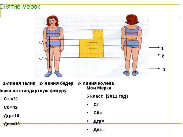 Снятие мерок 1-линия талии 2- линия бедер 3- линия колена Мерки на стандартную фигуруСт =31Сб=42Дгр=18Диз=36 Мои Мерки5 класс (2011 год) Ст =Сб=Дгр=Диз=
