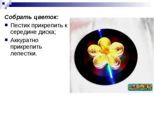 Собрать цветок:Пестик прикрепить к середине диска;Аккуратно прикрепить лепестки.