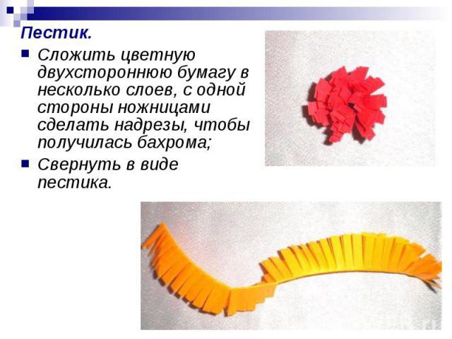 Пестик.Сложить цветную двухстороннюю бумагу в несколько слоев, с одной стороны ножницами сделать надрезы, чтобы получилась бахрома;Свернуть в виде пестика.