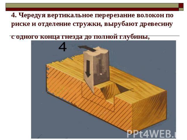 4. Чередуя вертикальное перерезание волокон по риске и отделение стружки, вырубают древесину с одного конца гнезда до полной глубины,