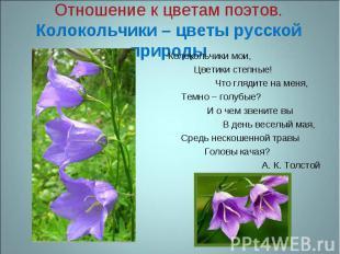 Отношение к цветам поэтов.Колокольчики – цветы русской природы Колокольчики мои,
