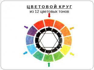 Ц В Е Т О В О Й К Р У Гиз 12 цветовых тонов