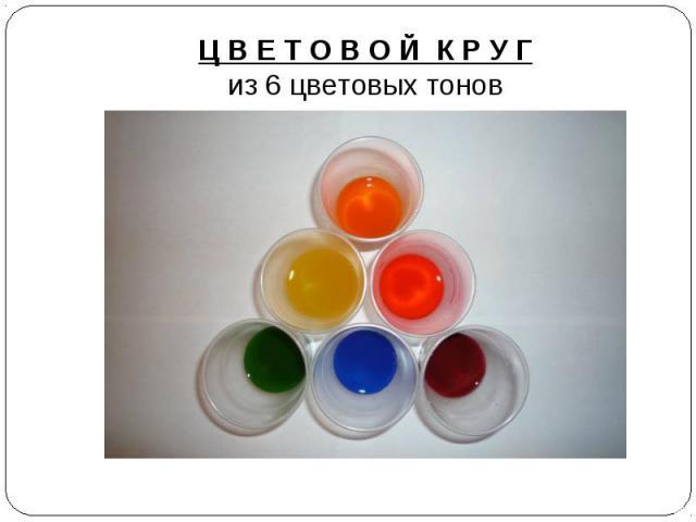 Ц В Е Т О В О Й К Р У Гиз 6 цветовых тонов