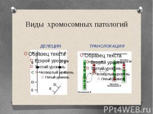 Виды хромосомных патологийДЕЛЕЦИЯ ТРАНСЛОКАЦИЯ