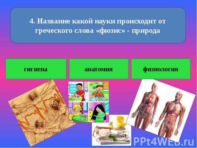 4. Название какой науки происходит от греческого слова «фюзис» - природа гигиена анатомия физиология