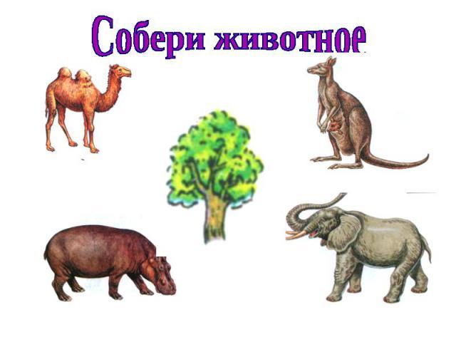 Собери животное