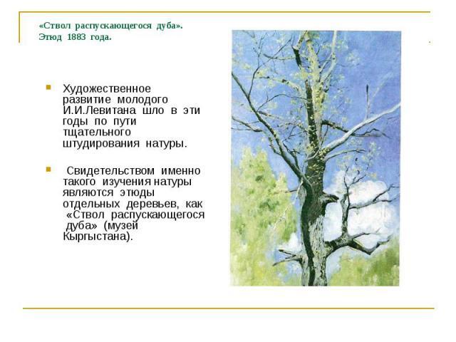 «Ствол распускающегося дуба». Этюд 1883 года. Художественное развитие молодого И.И.Левитана шло в эти годы по пути тщательного штудирования натуры. Свидетельством именно такого изучения натуры являются этюды отдельных деревьев, как «Ствол распускающ…