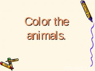 Color the animals.