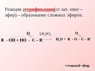 Реакция этерификации(от лат. ester – эфир) – образование сложных эфиров. O t,H2S