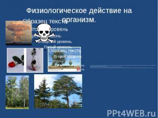 Физиологическое действие на организм. SO2 очень токсичен. Симптомы при отравлени