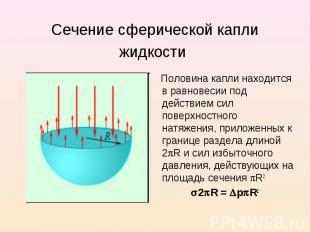 Сечение сферической капли жидкости Половина капли находится в равновесии под дей