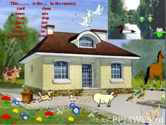 This…….. is the … in the country. yard clean house nice river deep horse fast cow big sheep fatflowerbed beautiful