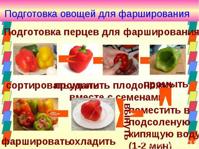 Доклад на тему фарширование овощей 8981