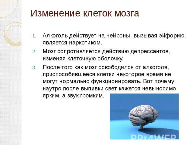 Изменение клеток мозга Алкоголь действует на нейроны, вызывая эйфорию, является наркотиком. Мозг сопротивляется действию депрессантов, изменяя клеточную оболочку. После того как мозг освободился от алкоголя, приспособившееся клетки некоторое время н…