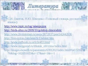 Литература С.И. Ожегов, Н.Ю. Шведова «Толковый словарь русского языка») http://w