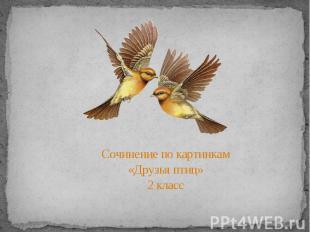 Сочинение по картинкам«Друзья птиц»2 класс