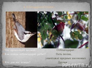4. Благодарные птахи хи Что произойдёт весной? Отблагодарят Как птицы отблагодар