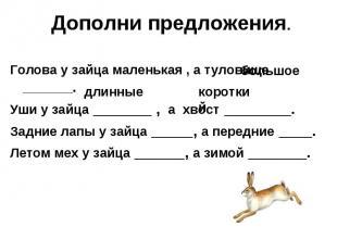 Дополни предложения. Голова у зайца маленькая , а туловище ________.Уши у зайца