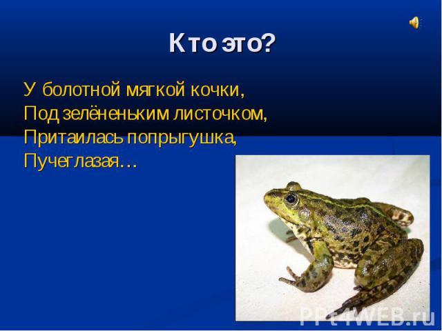 Кто это?У болотной мягкой кочки, Под зелёненьким листочком, Притаилась попрыгушка,Пучеглазая…