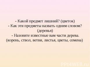 - Какой предмет лишний? (цветок)- Как эти предметы назвать одним словом? (деревь