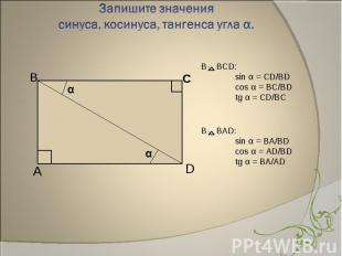 В BCD: sin α = CD/BDcos α = BC/BDtg α = CD/BC В BАD:sin α = BA/BDcos α = AD/BDtg