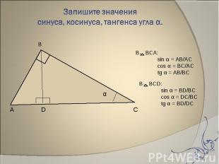 Запишите значения синуса, косинуса, тангенса угла α. В BCА:sin α = AB/ACcos α =
