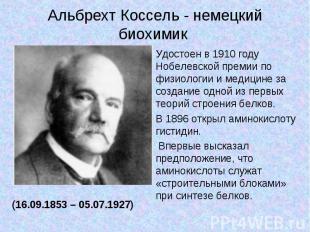 Альбрехт Коссель - немецкий биохимик Удостоен в 1910 году Нобелевской премии по
