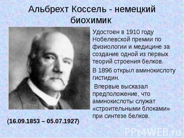 Альбрехт Коссель - немецкий биохимик Удостоен в 1910 году Нобелевской премии по физиологии и медицине за создание одной из первых теорий строения белков.В 1896 открыл аминокислоту гистидин. Впервые высказал предположение, что аминокислоты служат «ст…