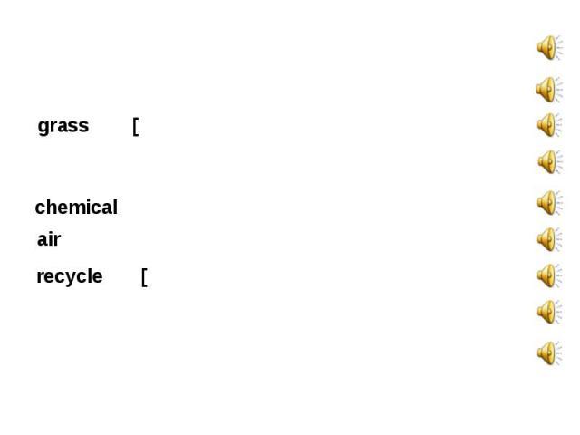disappear[ˌdɪs.əˈpɪər] glass [glɑːs] grass [ grɑːs] plastic [ˈplæs.tɪk] chemical [ˈkem.ɪ.kəl] air [eə] recycle [ˌriːˈsaɪ.kl] environment damage